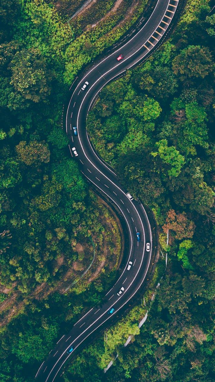 Lie, road, decision